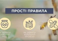 Створено ролик про профілактику отруєння бджіл