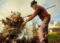 Не паліть опале листя - це шкодить довкіллю!