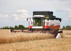 Безпечне застосування десикантів на посівах сільськогосподарських культур