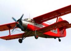 У Вінницькій області розпочалося проведення пероральної імунізації диких м'ясоїдних тварин за допомогою авіації