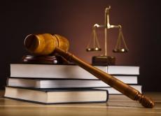 Зміни законодавства у сфері охорони прав на сорти рослин