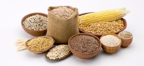 Визначення посівних якостей насіння станом на 15 травня 2019 року