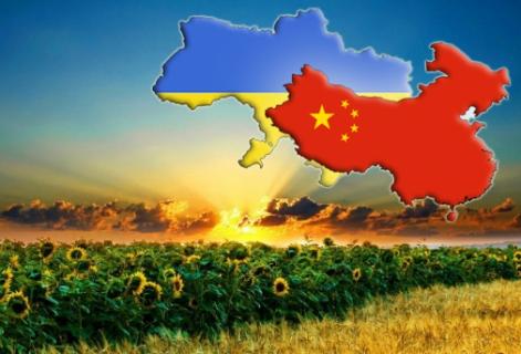 До уваги суб'єктів господарювання, що планують здійснювати експорт ячменю, сої та кукурудзи до КНР!