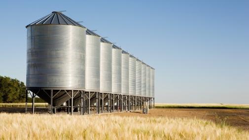 Підготовка складів та зерноочисної техніки до приймання насіння нового врожаю