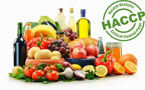 Інформація щодо запровадження системи HACCP у закладах громадського харчування