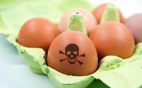 Яйце, молоко, м'ясо … САЛЬМОНЕЛА