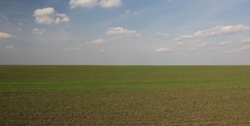 Прогноз фітосанітарного стану та рекомендації щодо захисту сільськогосподарських рослин в господарствах області у квітні 2019 року