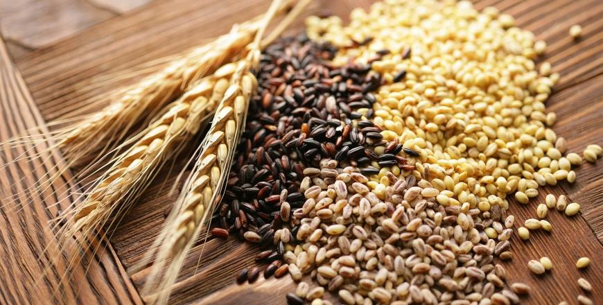 Визначення посівних якостей насіння станом на 08 травня 2019 року