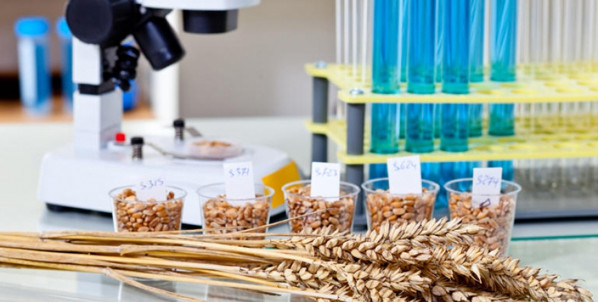 Інформація щодо визначення посівних якостей насіння