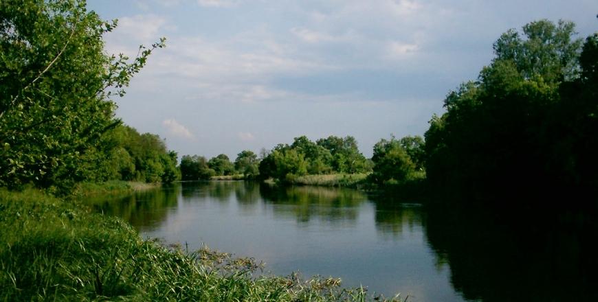 Оперативна інформація щодо ліквідації наслідків забруднення р. Рось в межах Погребищенського району станом на 21 червня