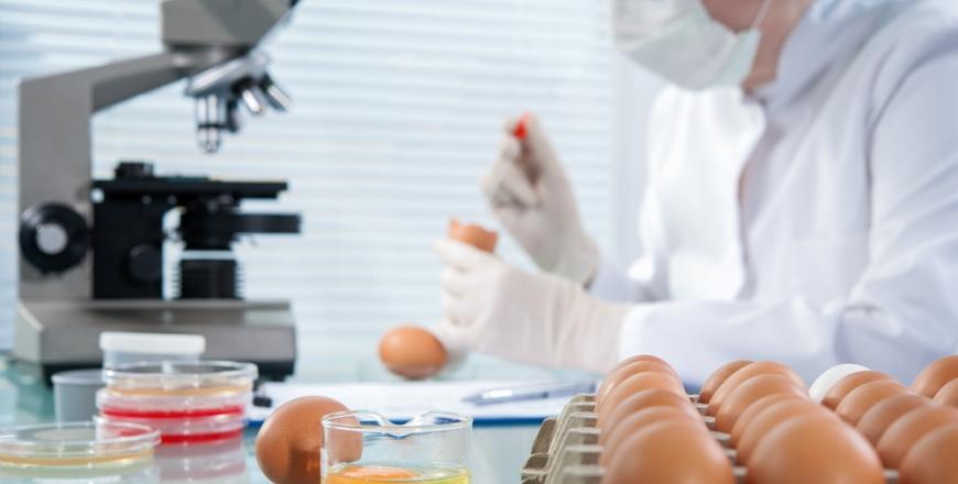 Мікробіологічна безпека харчових продуктів