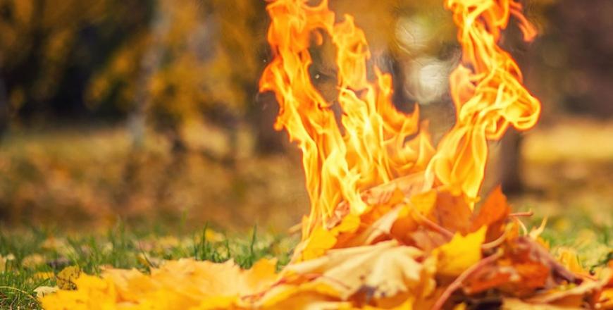 Спалювання листя становить загрозу для здоров'я та карається законом!