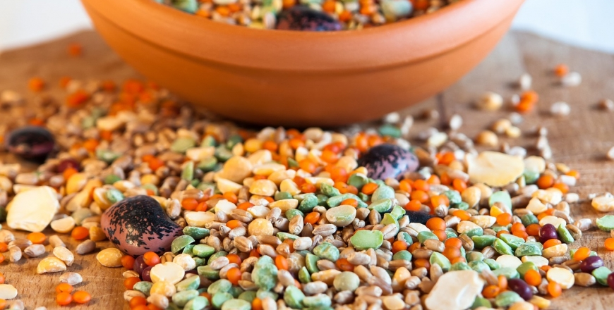 Визначення посівних якостей насіння станом на 7 травня 2020 року